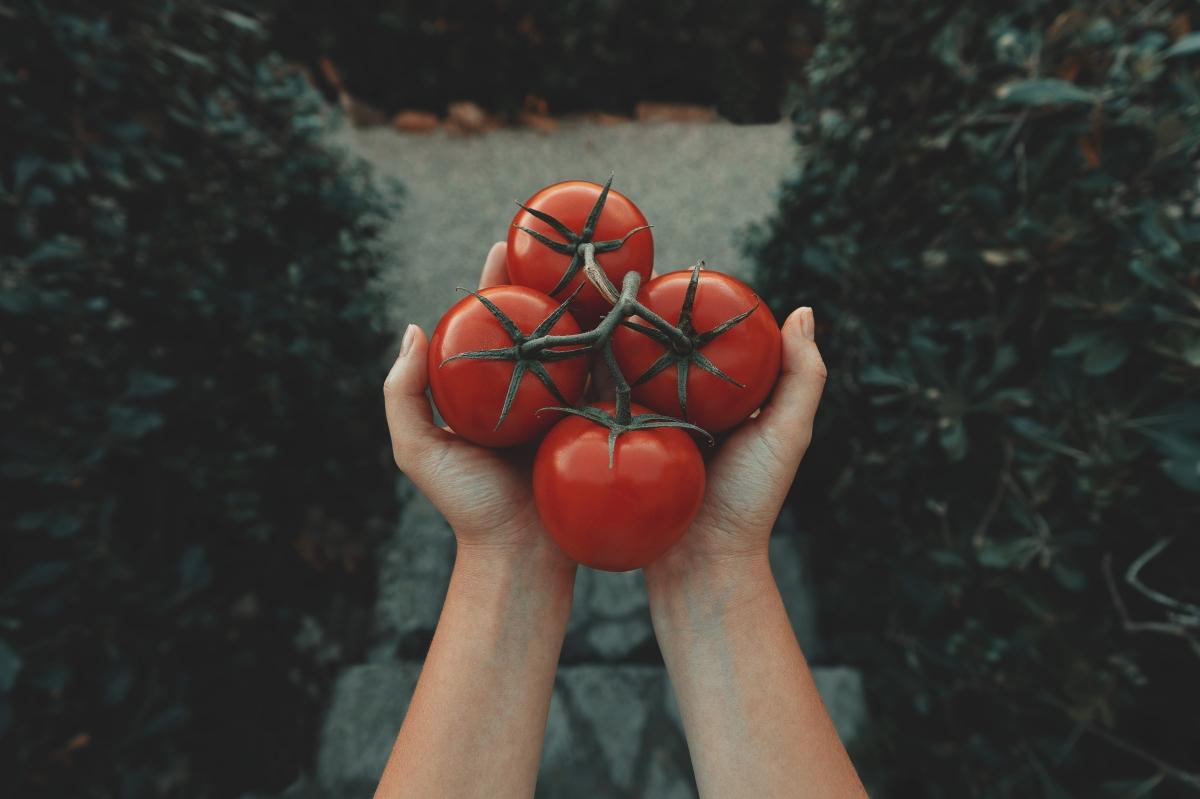Mascarilla de tomate